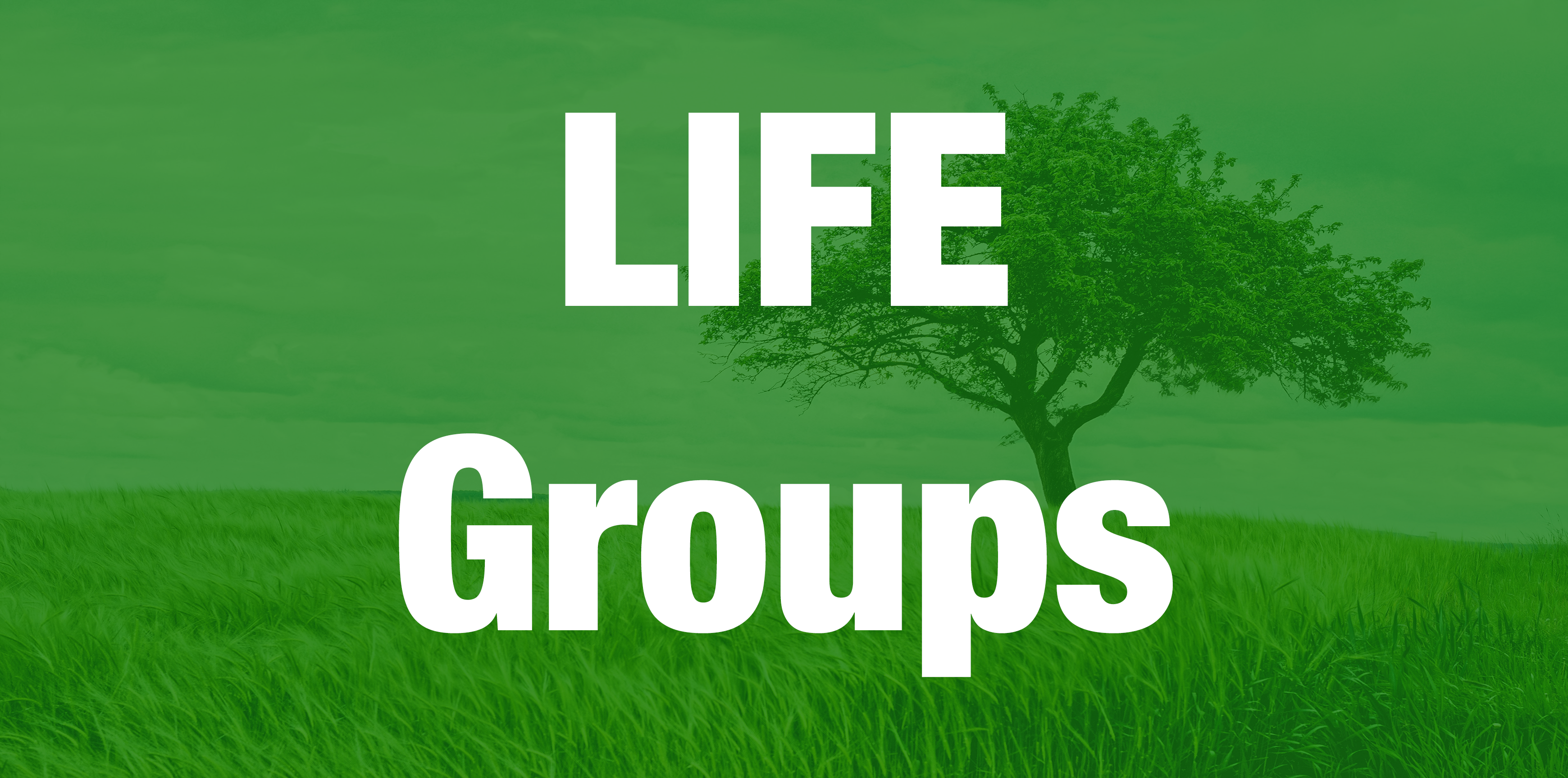 Life Groups Ministry